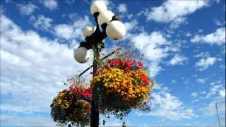 getlinkyoutube.com-Ayat-Ayat Cinta - Saxophone Instrumental