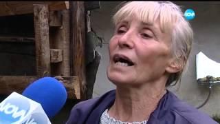 Бабата е майка и баща - Съдебен спор - Жоро Игнатов (04.10.2015)
