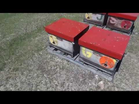 Apicultura la distanta 32   Fund anti varroa
