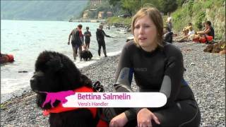 Extraordinary Dogs Episode 1 PROMO Trailer