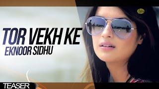 Tor Vekh Ke Eknoor Sidhu    Teaser    2014 - Anand Music