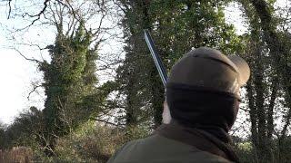 getlinkyoutube.com-The Shooting Show - Irish pigeon shooting, the must-have Swarovski accessory and SHOT show 2017