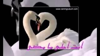 getlinkyoutube.com-نشيد عن الزوج.FLV