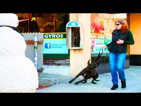 Scaring Puppy Dogs Prank With a Snowman Season 2 Episode 6