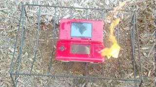 getlinkyoutube.com-Burning a Nintendo DS