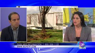 Julie Moreno de Kanner & Pintaluga, nos dice que hacer si su casa sufrió daños por un huracán