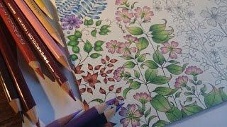 Coloring the Secret Garden Part 1