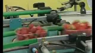 getlinkyoutube.com-Strawberry Line