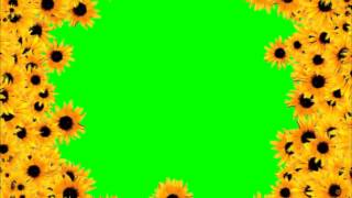 getlinkyoutube.com-GreenScreen Flower Flor   YouTube