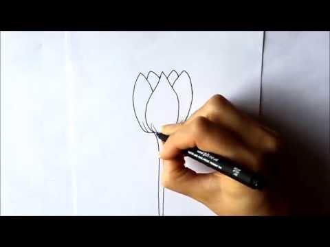 Cómo dibujar un Tulipán Cómo dibujar flores Dibuja Conmigo Dibujos de Flores