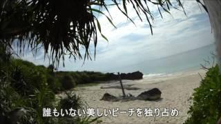 "getlinkyoutube.com-""与論島ビレッジ""から""メーラビビーチ""まで歩く 2016 08 16"