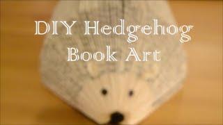 getlinkyoutube.com-DIY Easy Hedgehog Book Art