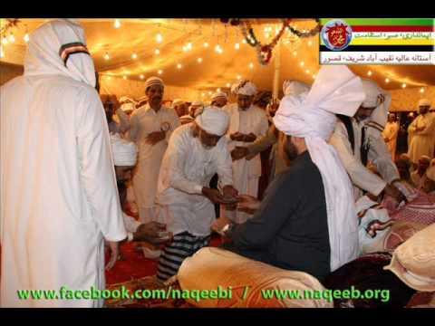 Peer Naqeeb ul Shah