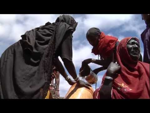 In Ethiopia, water trucks provide essential life-line amidst drought