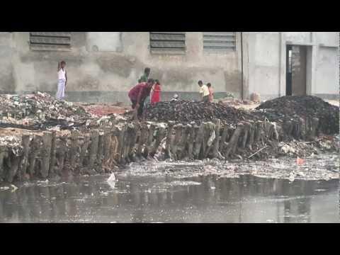 Textiles: Environmental Impacts