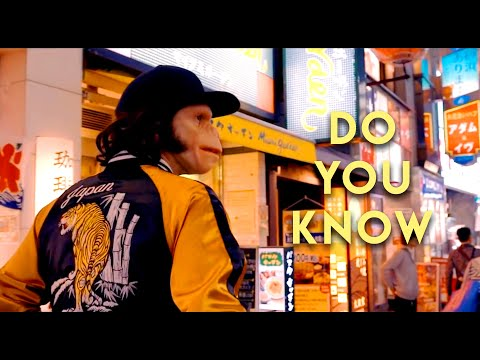 Voir la vidéo : KID NOIZE - DO YOU KNOW