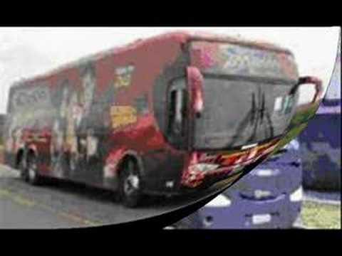 Ônibus das Principais Bandas de Forró