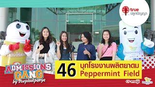 AdGang59 : 46 บุกโรงงานผลิตยาดม Peppermint Field