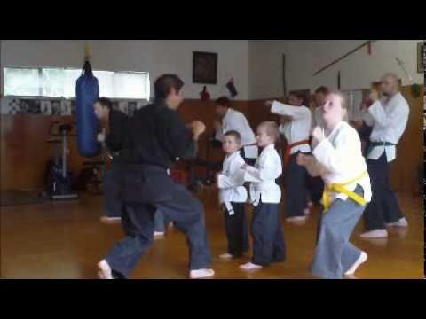 Okinawa te Karate Kumite seminar
