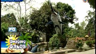 getlinkyoutube.com-Resort in Antipolo home to PH's first storm wave pool