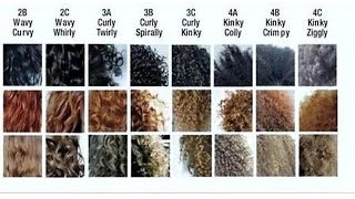 getlinkyoutube.com-KNOW your hair TYPE and POROSITY level