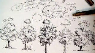 getlinkyoutube.com-Pen & Ink Drawing Tutorials | How to draw trees