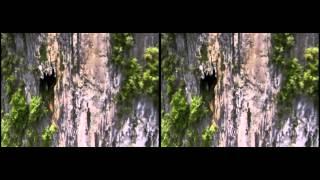 getlinkyoutube.com-4K 3D Planet Earth Amazing Nature Scenery Side By Side