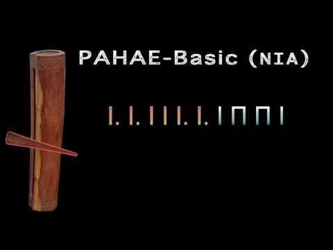 PAHAE Basic (NIA) with Tabs