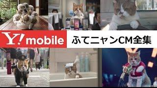 getlinkyoutube.com-【ふてニャン】 Y!モバイルCM大全集 【2016版】