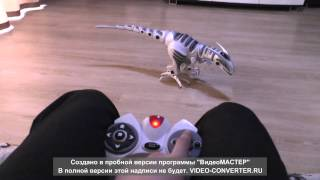 getlinkyoutube.com-Roboraptor WowWee