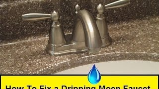 getlinkyoutube.com-How To Fix a Dripping Moen Faucet (HowToLou.com)