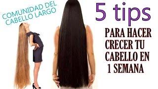 getlinkyoutube.com-5 tips para hacer crecer tu cabello en 1 semana
