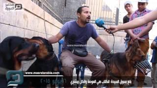 getlinkyoutube.com-مصر العربية    بائع بسوق السيدة: الكلاب هي الموضة والكل بيشتري
