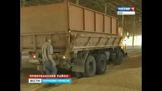 getlinkyoutube.com-Уборка  зерновых- колосовых В Прикубанском районе