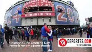 Fanático de Cubs pide matrimonio a su novia