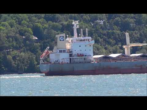 Click to view video Abyssinian - IMO 9646728