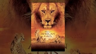 getlinkyoutube.com-Disneynature: African Cats