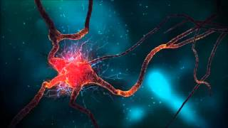 getlinkyoutube.com-Sexual Stimulation, Binaural Beats   Brainwave Entrainment