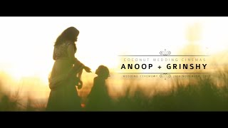 getlinkyoutube.com-Wedding story of Anoop + Grinshy