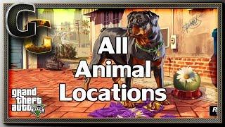 getlinkyoutube.com-GTA V [PC] - Unlock All Animals! (Peyote Plant Locations)