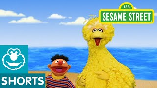 Sesame Street: Journey to Ernie: Beach