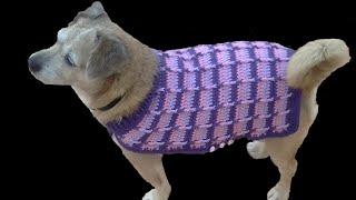 getlinkyoutube.com-Como hacer un jersey  para perro 1ª parte tutorial