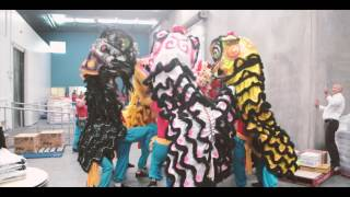 getlinkyoutube.com-Melbourne Dai Bi Quan Am Lion Dance Team - 2017 highlights