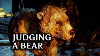 getlinkyoutube.com-Dragon Age: Inquisition - Judgment of a bear (all options) [Jaws of Hakkon DLC]
