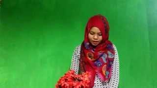 getlinkyoutube.com-Pidato Bahasa Indonesia bertema pendidikan