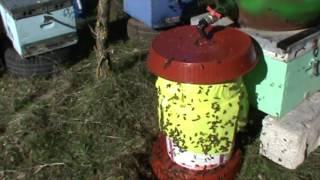 Κατασκευή ποτίστρας μελισσών με βετέξ