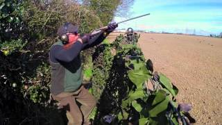getlinkyoutube.com-Caccia al Colombaccio irlanda 2015 | Pigeon Hunting with .410