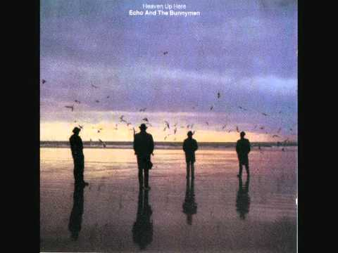 show of strength de echo the bunnymen Letra y Video