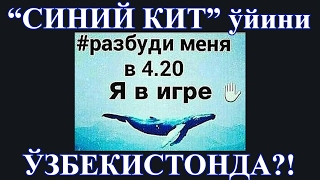 "getlinkyoutube.com-""СИНИЙ КИТ"", ""ТИХИЙ ДОМ"" Ўзбекистонда?! ЗОМБИ ТЕРРОР!"