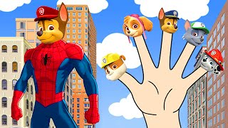 getlinkyoutube.com-Paw Patrol Spider Man Marvel Finger Family Song - Hulk & Captain America Nursery Rhymes